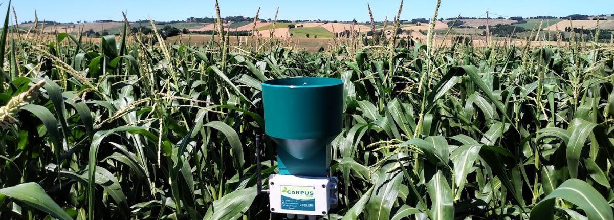 L'IrrigAssistant préconise l'irrigation à 3 jours