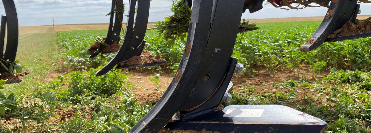 Des ailerons pour transformer le Terrano en scalpeur