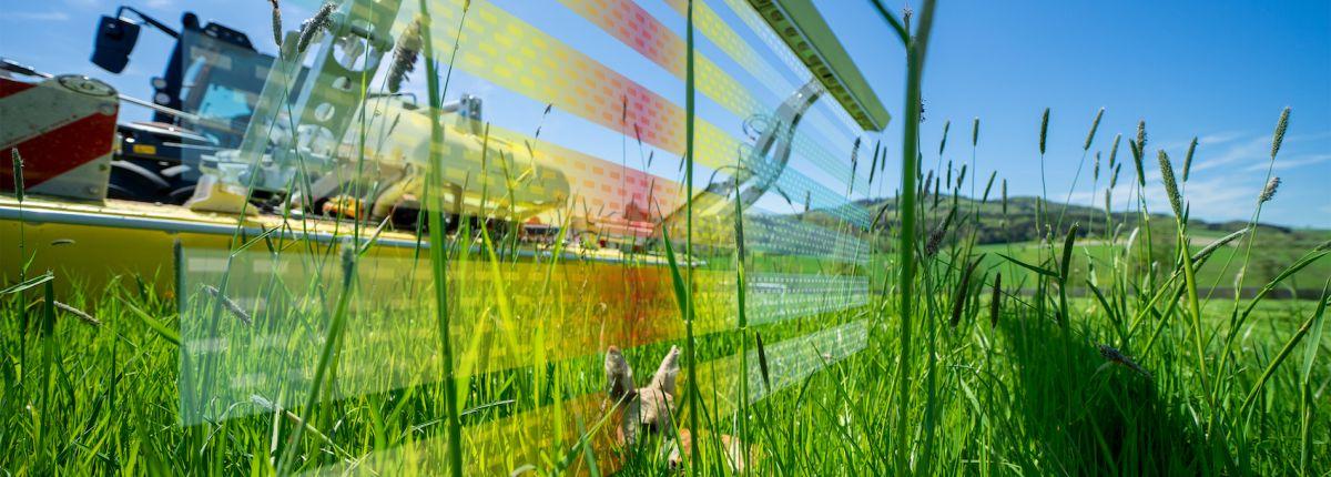SensoSafe détecte automatiquement le gibier dans l'herbe
