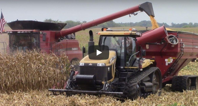 moisson du maïs aux USA