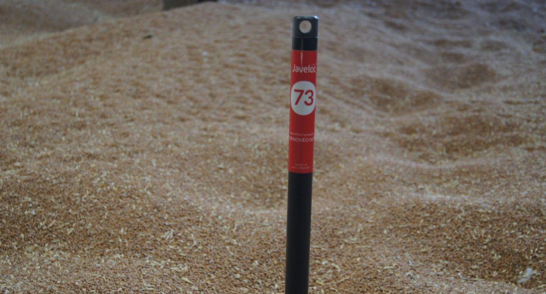 Javelot: des sondes connectées pour la surveillance du grain