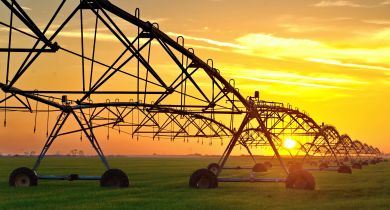 Alliance: un pneu dédié aux pivots d'irrigation