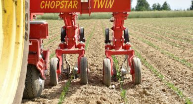 La bineuse Chopstar-Twin enjambe le rang.