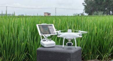 Le P4 Multispectral, un drone conçu pour l'agriculture.